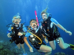 Dominica Champagne Reef Discover SCUBA Diving Excursion