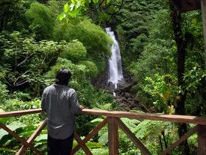 Dominica Natural Highlights Eco Excursion