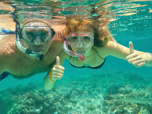 Cozumel snorkeling Shore Excursion Booking