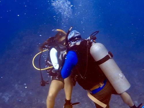 Roatan diving Excursion Reviews