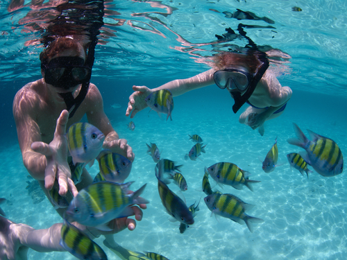 Cozumel Island El Cid Beach Resort All Inclusive Beach Break Excursions Tickets