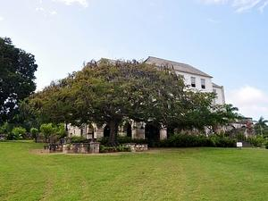 Falmouth Rose Hall Great House, Montego Bay City Sightseeing, Shopping and Dr. Cave Beach Excursion