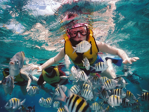 Roatan  Honduras coral reef Tour Tickets