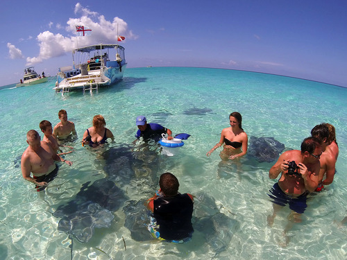 Grand Cayman coral barrier reef snorkel Booking