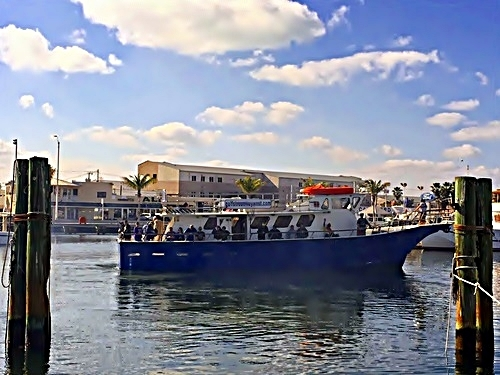 Key West deep sea fishing Shore Excursion Prices