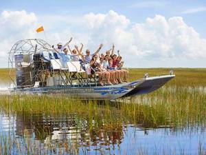 Fort Lauderdale Private 1-Hour Sawgrass Park Everglades Airboat Excursion