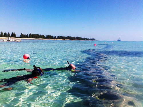 Freeport Bahamas Snorkeling Day Pass Trip Reviews
