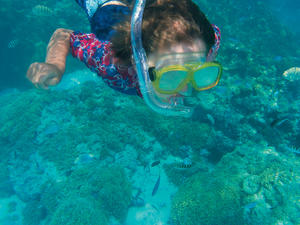 Freeport Western Eco Sightseeing and Snorkel Excursion with Lunch