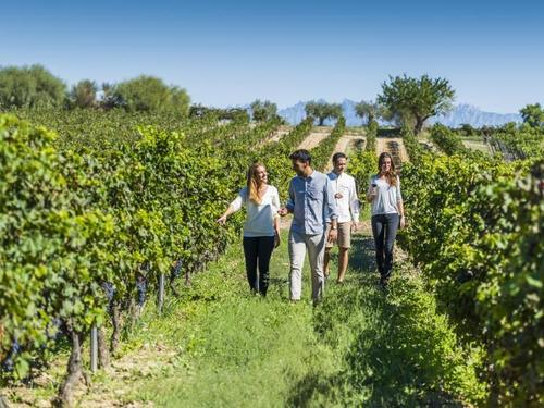 Barcelona Freixenet Shore Excursion Booking