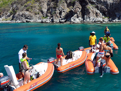 St. Kitts  Basseterre frigate bay Excursion Cost
