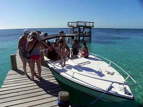 Roatan  Honduras snorkeling Cruise Excursion