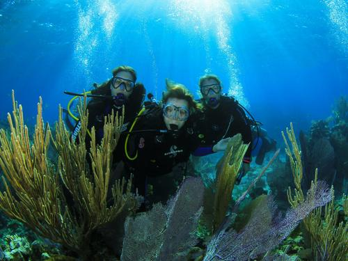 Nassau perfect for all divers Tour