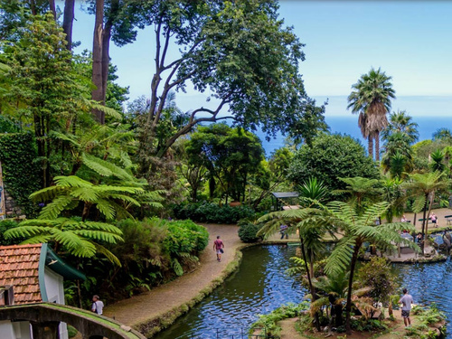Funchal (Madeira) Portugal Toboggan Excursion Reviews