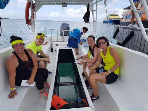 Cozumel amazing race Excursion Booking
