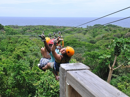Roatan zipline and beach Cruise Excursion Cost