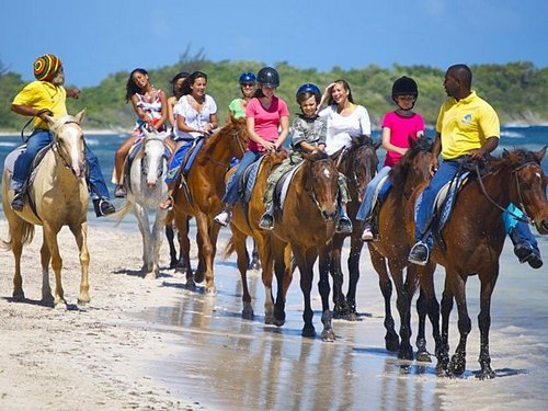Falmouth horse riding through water Cost
