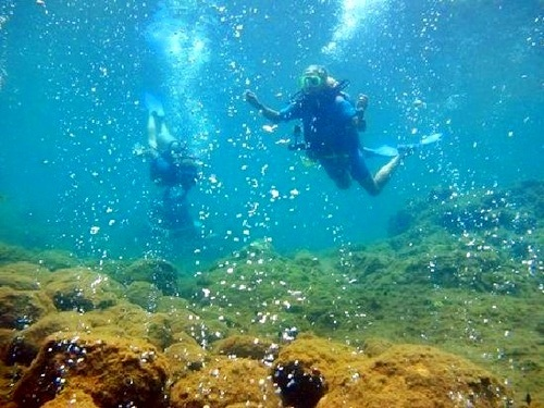 Dominica padi Cruise Excursion Prices