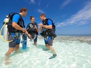 Grand Cayman Beginner Discover SCUBA Diving Excursion