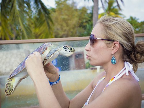 Grand Cayman Turtle Center Sightseeing Trip Reservations