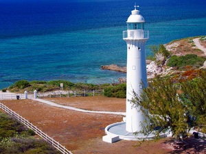 Grand Turk Highlights, Shallow Reef and Island Wall Snorkel Excursion