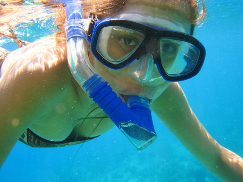 Cayman Island captains choice snorkel Trip Reservations