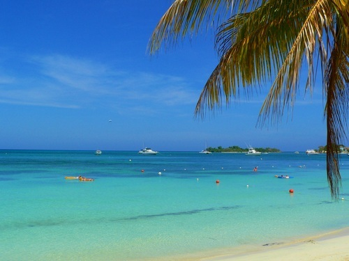 Falmouth  Jamaica Secrets Wild Orchid Resort Trip Prices
