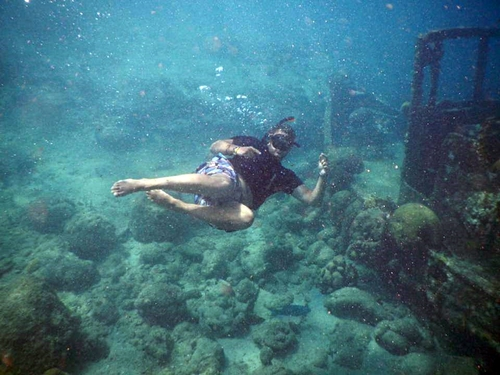 Curacao Willemstad guided snorkeling Shore Excursion Tickets