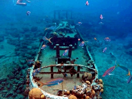 Curacao tugboat wreck snorkel Cruise Excursion Reviews