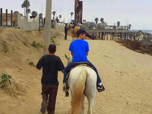 Ensenada Mexico horseback riding Shore Excursion Booking