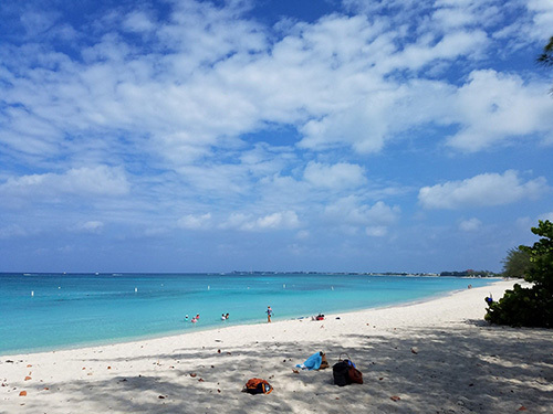 Grand Cayman  Cayman Islands sightseeing Tour Prices
