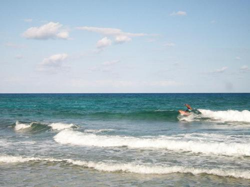 Cozumel learn to surf Cost