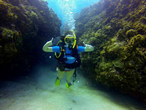 Grand Cayman George Town scuba Cruise Excursion Cost