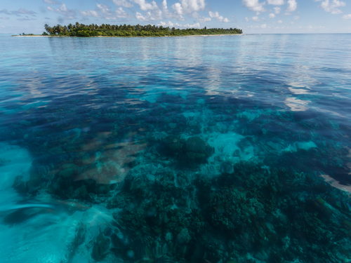 Belize City boat snorkeling Tour Tickets