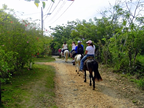 Roatan  Honduras zip line Excursion Reviews