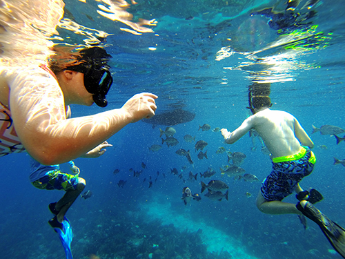 Roatan  Honduras One Mile Cruise Excursion Reservations