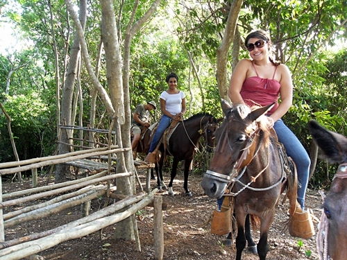 Roatan Honduras jungle horse riding Excursion Tickets