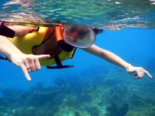 Key West Fury snorkel Shore Excursion Booking