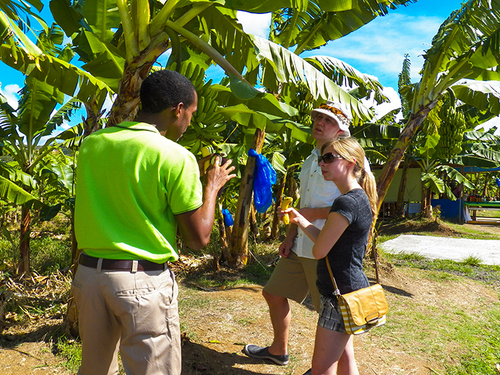 St. Lucia island sightseeing Excursion Prices