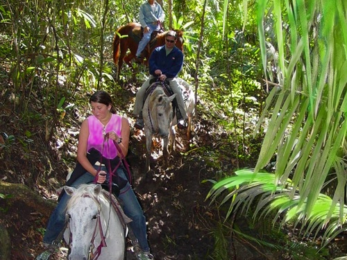 Roatan Honduras sightseeing Excursion Cost
