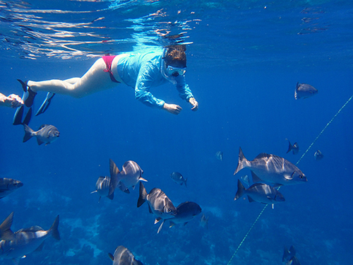 Roatan  Honduras Family Snorkel Excursion Cost