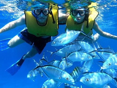 Roatan  Honduras snorkeling Excursion