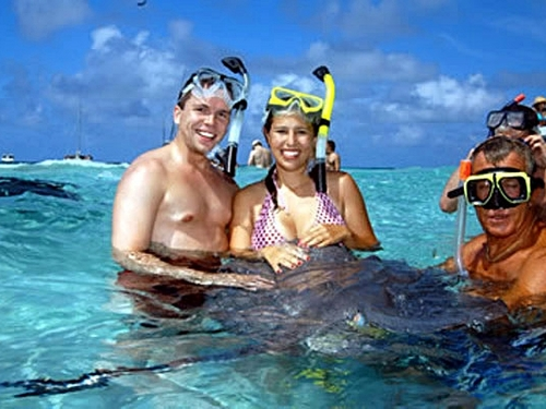 Grand Cayman stingray city Reviews