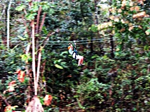 Belize City atv and zip line Cruise Excursion Reviews