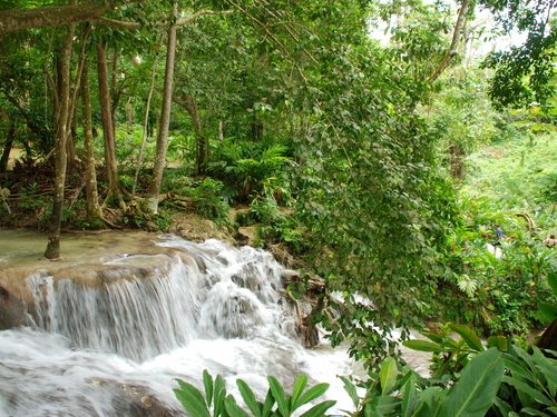 Montego Bay falls and tubing Cruise Excursion Reviews