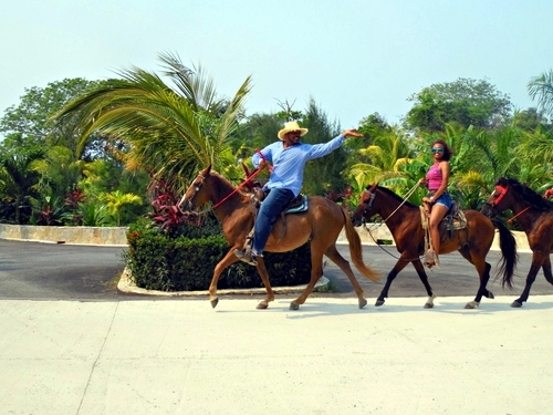 Roatan  Honduras horseback riding Excursion Cost
