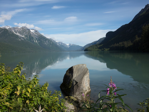 Haines Nature sightseeing Tour Tickets