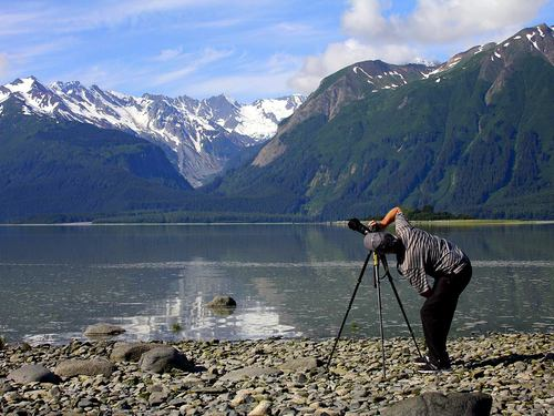 Haines Alaska wildlife photography Trip Reservations
