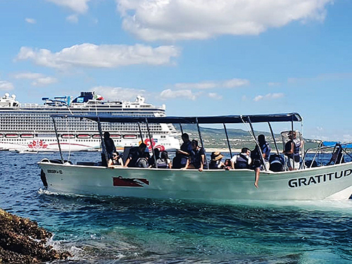 Cabo San Lucas Sea of Cortez wildlife Trip Prices