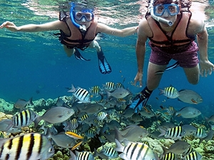 Havana Cuba Coral Beach and Saturn Cave Snorkel Excursion
