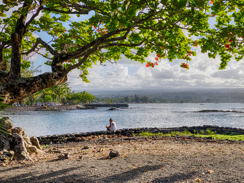 Hilo (Big Island) Kahuna Sightseeing Excursion Reservations